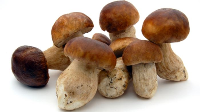 Mushrooms May Be The Best Food To Fight Aging, And Here's Why