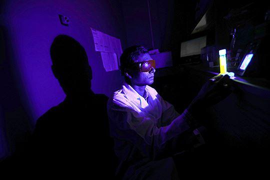 cahaya biru pada telefon bimbit boleh butakan mata - kajian