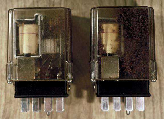 suis elektrik jadi tempat kegemaran untuk semut bersarang sampai boleh jadi punca kerosakan!