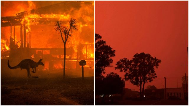Australia Skies Turn Red As Bushfire Kill Half A Billion Animals