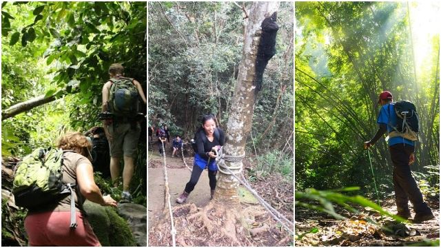 Hiking, Camping And Jungle Trekking To Be Allowed Again Starting Monday!
