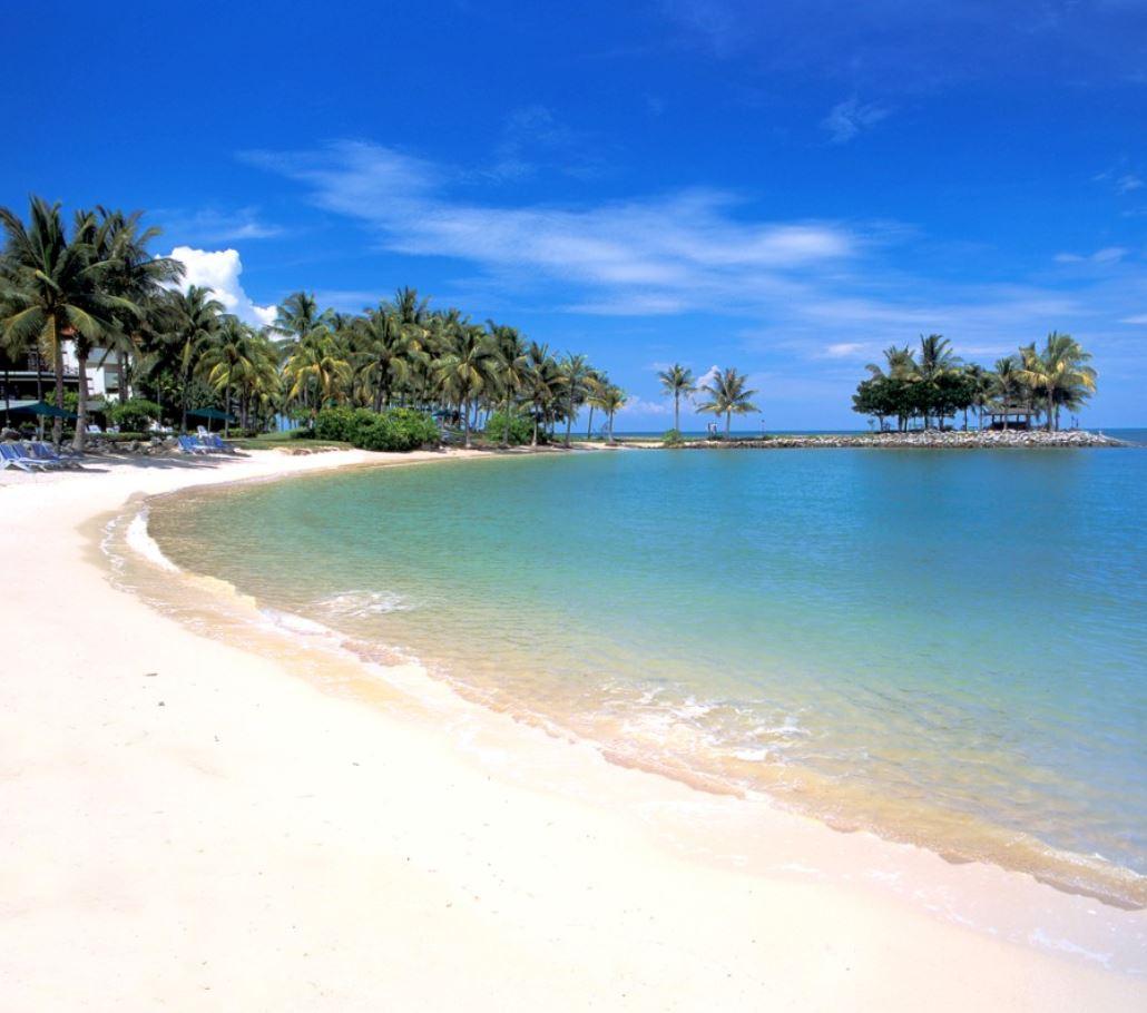 到海边要小心!青年在邦咯岛被黄海毛虫螫一口导致左脚瘫痪!