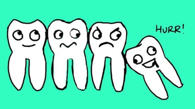 Ever Wondered Why Wisdom Teeth Are Called That? Here's The Answer