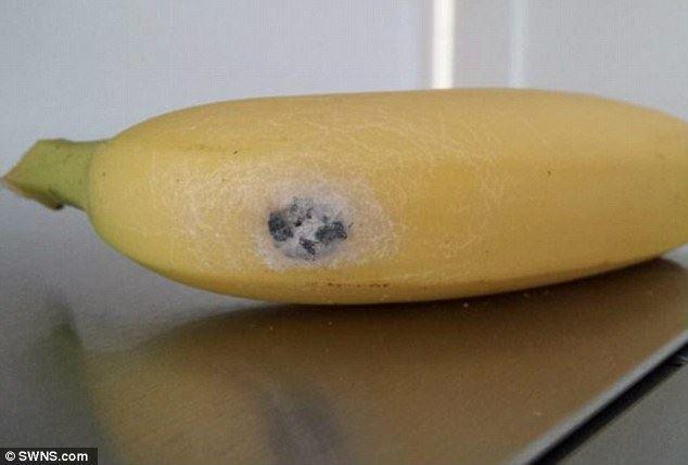 hati-hati kalau terjumpa tanda putih seperti ini pada buah pisang