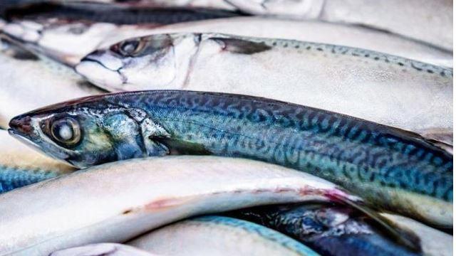 petua nak hilangkan bau hanyir pada ikan