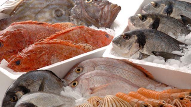 kebaikan ikan sebagai sumber protein utama