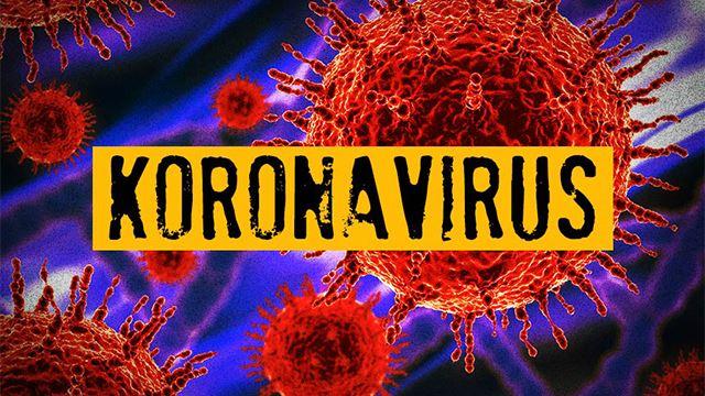 menteri kesihatan sahkan dua rakyat malaysia positif novel koronavirus