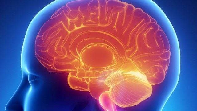 tabiat yang kita sering lakukan tapi sebenarnya boleh merosakkan otak