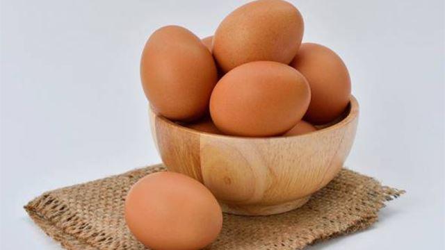 bertaruh makan 50 biji telur namun mati pada biji yang ke 42