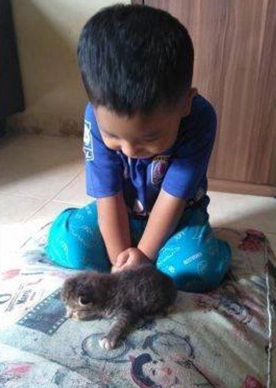 takut mak buang, anak ini namakan kucingnya tupperware