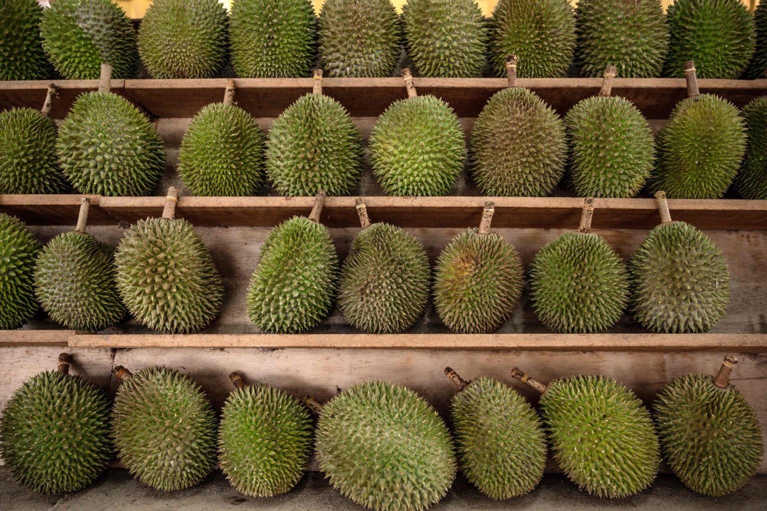 ramai tak puas hati tonton video masak durian sekali dengan kulitnya