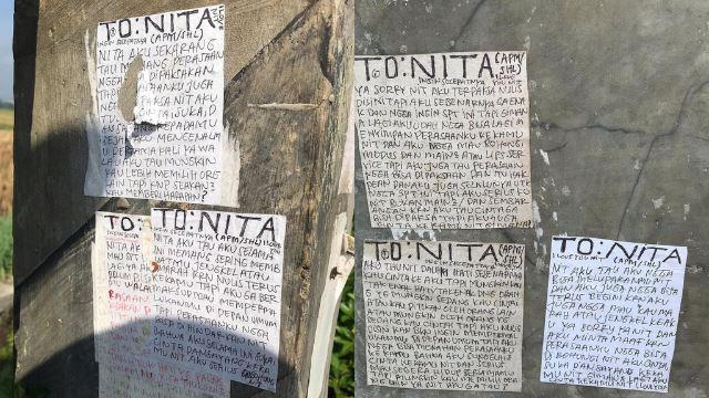 viral surat cinta buat gadis bernama nita ditampal merata di tepi sawah