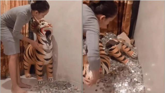 pergh, wanita pecahkan tabung harimau, jumlah simpanan cecah lebih rm4k!