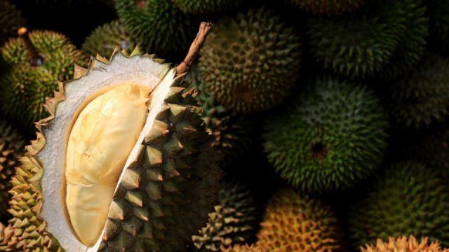 tiada buku perubatan yang mengatakan tidak boleh makan durian setelah divaksin