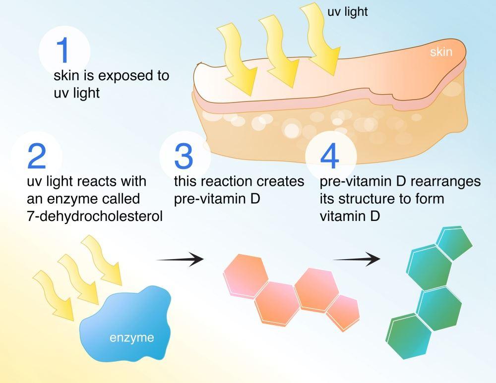 betul ke vitamin d boleh turunkan risiko covid-19?