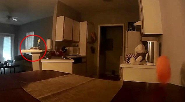 [Video] Rumah Berhantu, Lelaki Terkejut Tengok Rakaman Kamera Di Rumahnya