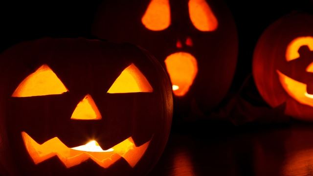 5 Tips To Survive Halloween