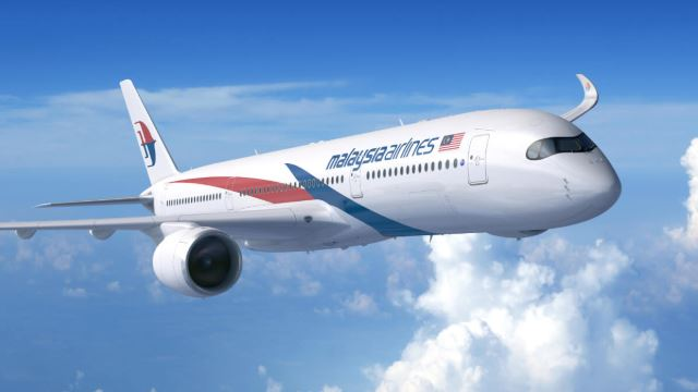 Malaysia Airlines Plane Forced To Turn Back