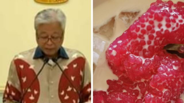 People Are Now Comparing Our Defence Minister's Batik Shirts With Malaysian Desserts