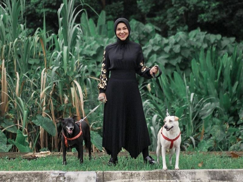 umie aida speaks out on being kind to all animals, including dogs!