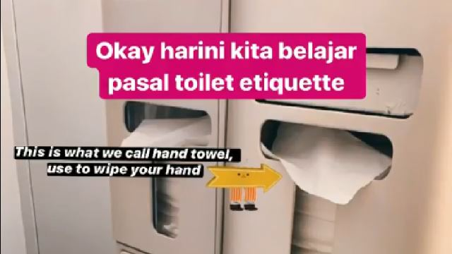 Guide To Plane Toilet Etiquette 101