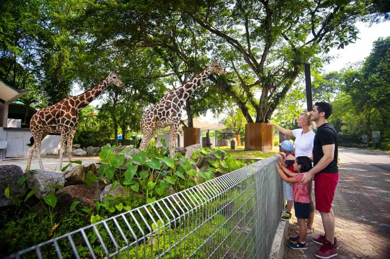 here's 5 family activities you can try out in selangor!