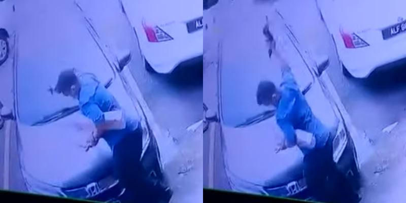 a man was seen violently throwing a cat on the floor