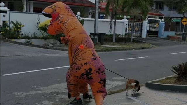 A T-Rex Spotted Walking A Doggo In Sabah!