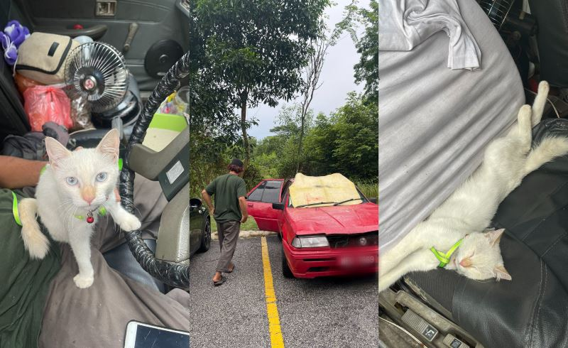m'sians touched by homeless man who lives in his car with his cat, puteri