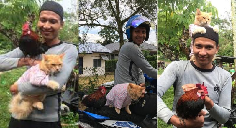 video of man bringing his cat and chicken jalan-jalan on his motorcycle goes viral!