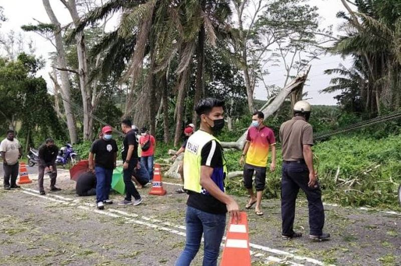 food delivery rider injured by fallen tree in johor