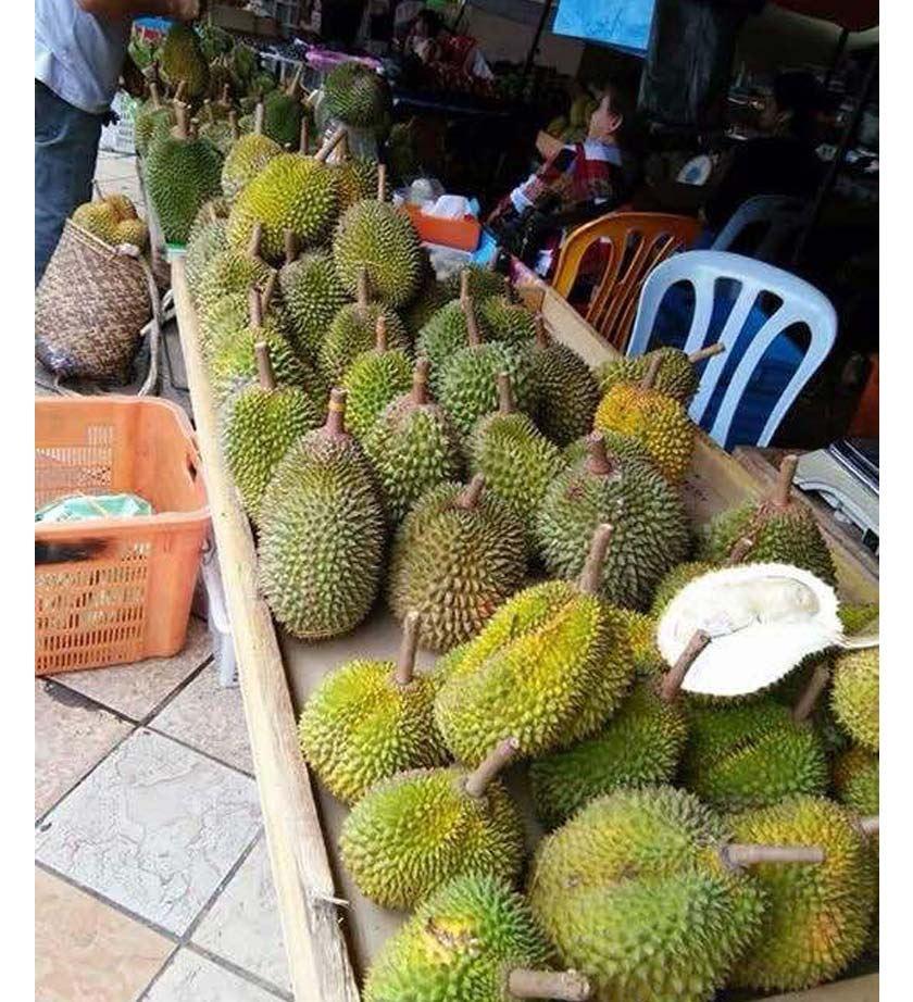 buah-buahan tempatan membanjiri pasar sentral sibu